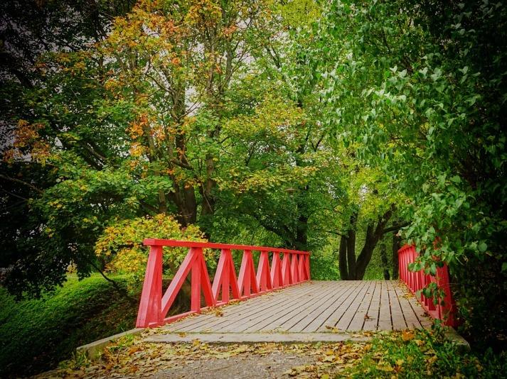 autumn-1748516_960_7201